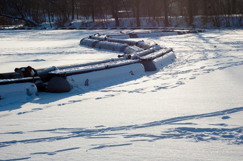 Зимние фотографии в контрасвете