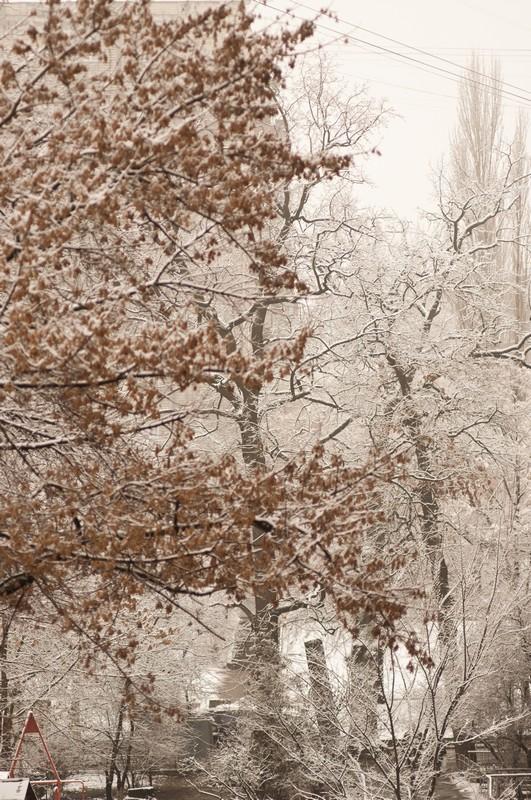 Зимние фотографии сделанные на объектив Юпитер 37 А