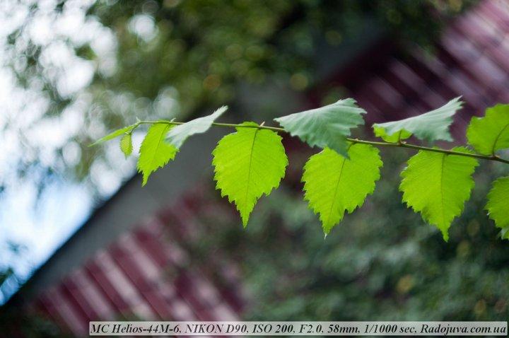 Фото на Гелиос-44-м6