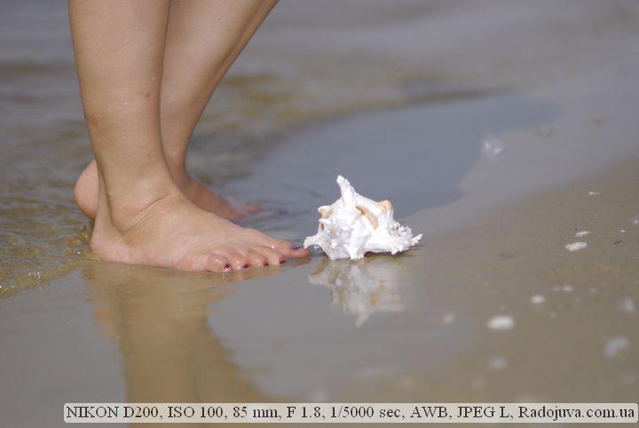 Пример фото на Nikon D200