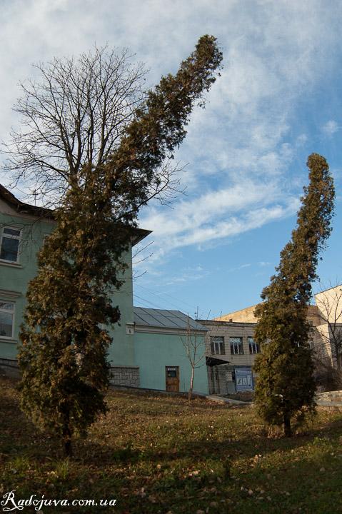 Пример фотографии на Зенитар-Н 16/2.8