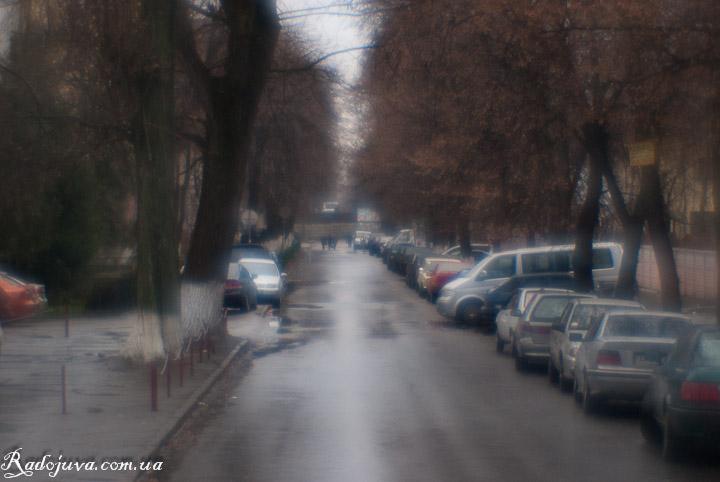 Фото на монокль. После дождя.