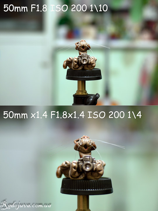 Два тестовых снимка на Soligor tele-converter 1.4x