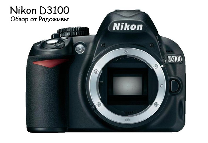 Обзор Nikon D3100. Вид Nikon D3100 body