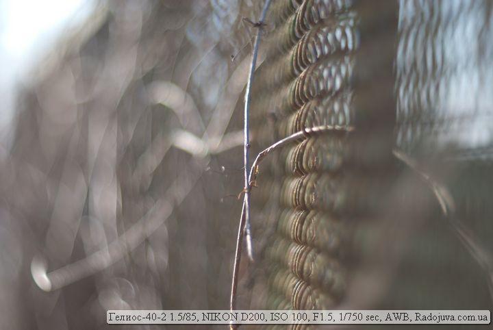 Пример фотографии на объектив Гелиос-40-2