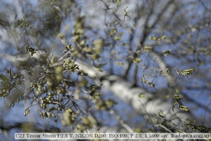 Пример фотографии на CZJ Tessar 50mm 1:2,8 T