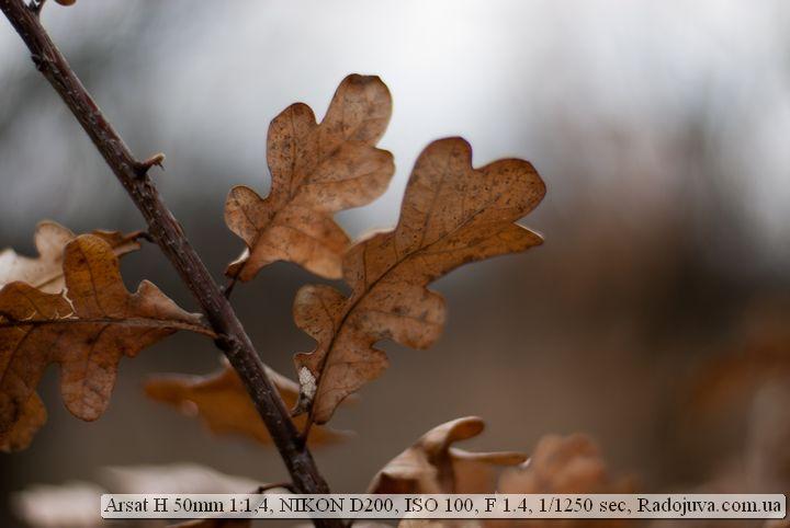 Пример фотографий на ARSAT H 1:1.4 50mm
