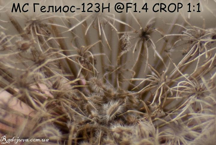 Резкость на Гелиос-123Н F1.4 без обработки, кроп 1 к 1, качество сжатие 100%