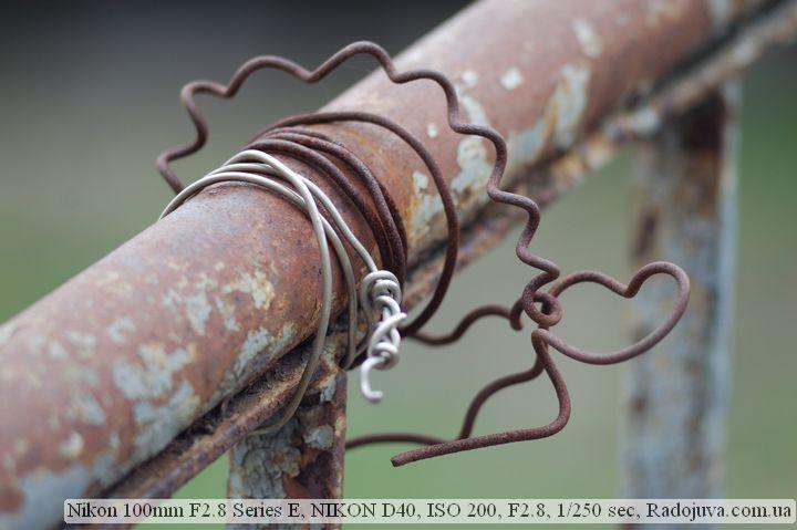 Пример фото на Nikon 100 mm F 2.8 Series E