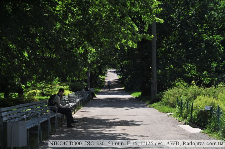 Фотография. Снято на Nikon D300 без обработки