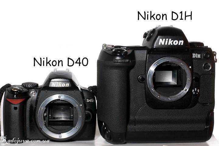 Вид Nikon D1H и Nikon D40 - разница в размерах