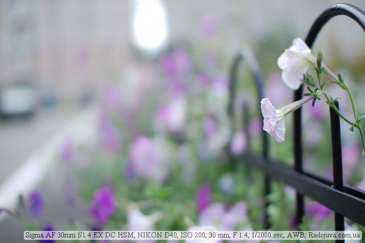 Sigma AF 30 1.4 EX DC HSM. Photo on open aperture