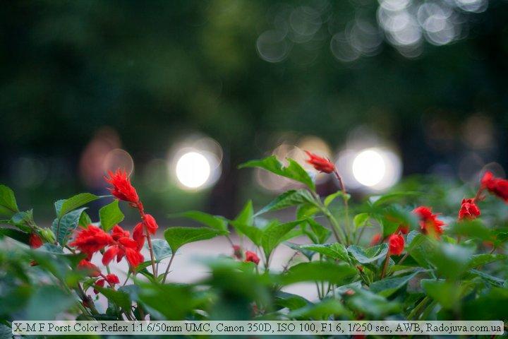 Sample photo on a Porst Color Reflex F1.6 50mm