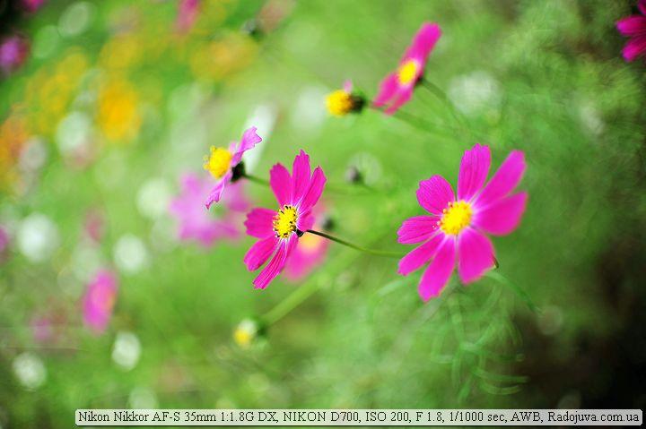 Фото на Nikon 35mm F1.8G DX и полный кадр в режиме FX