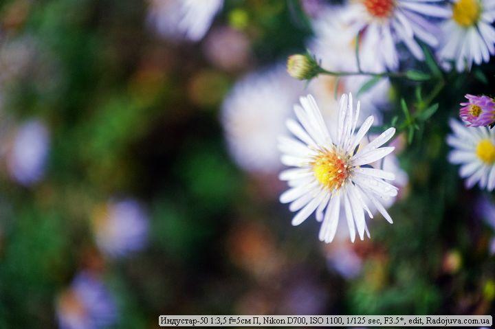 Фото на дальномерный Индустар-50 1:3,5 f=5см П