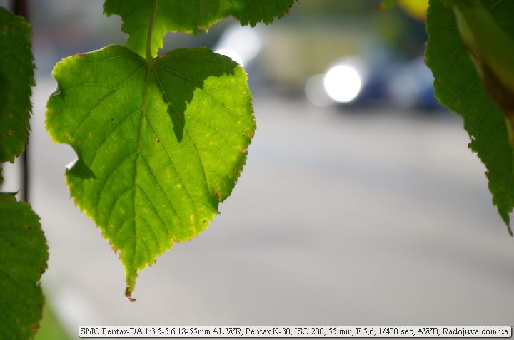Пример фото на SMC Pentax-DA 3.5-5.6 18-55mm AL WR