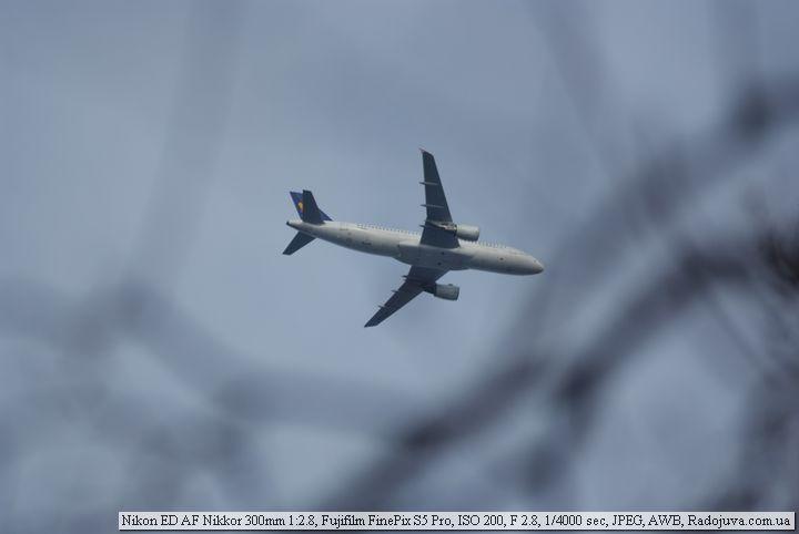 Пример фотографии на Nikon ED AF Nikkor 300mm 1:2.8