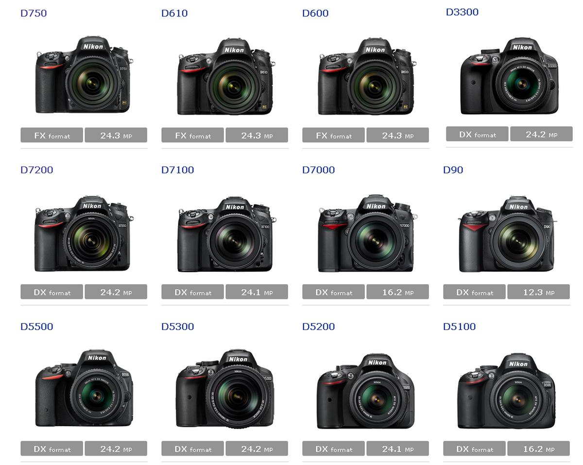 Популярные фотоаппараты Nikon
