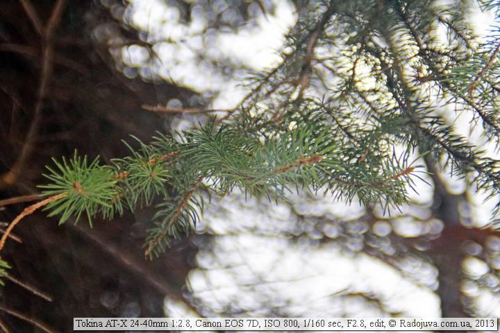 Пример фото на Tokina 24-40 2.8 ATX