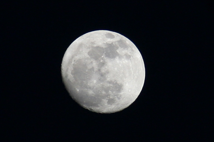 Кроп (кадирование) 1:1 (720х479) моего снимка Луны с объектива Юпитер-21М и камеры Canon 350D