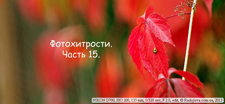 Фотохитрости для Nikon. Часть 15.