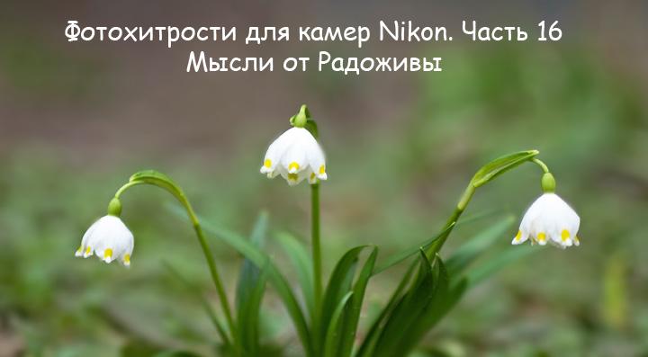 Фотохитрости для Nikon. Часть 16