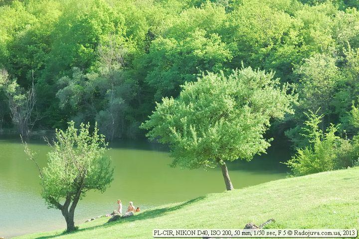 Цвет травы и листьев при использовании поляризационного фильтра в яркий солнечный день