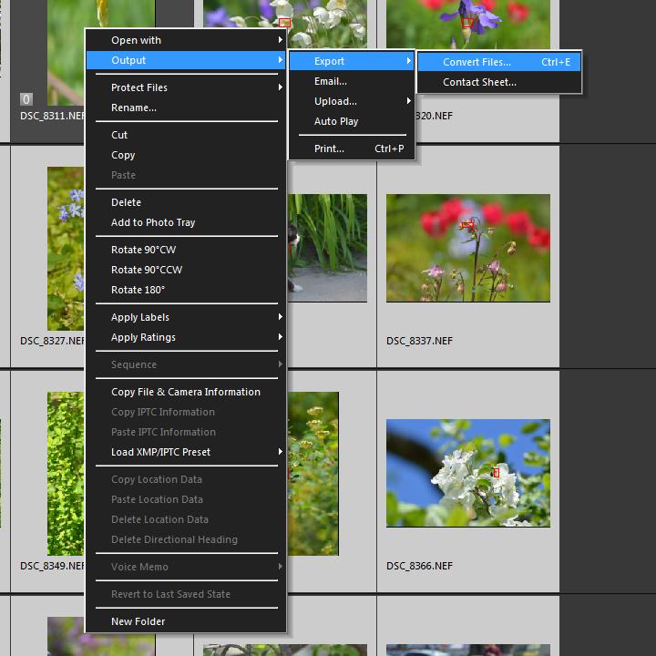 Таким образом выполняется конвертирование (экспорт) фотографий в программе ViewNX-i