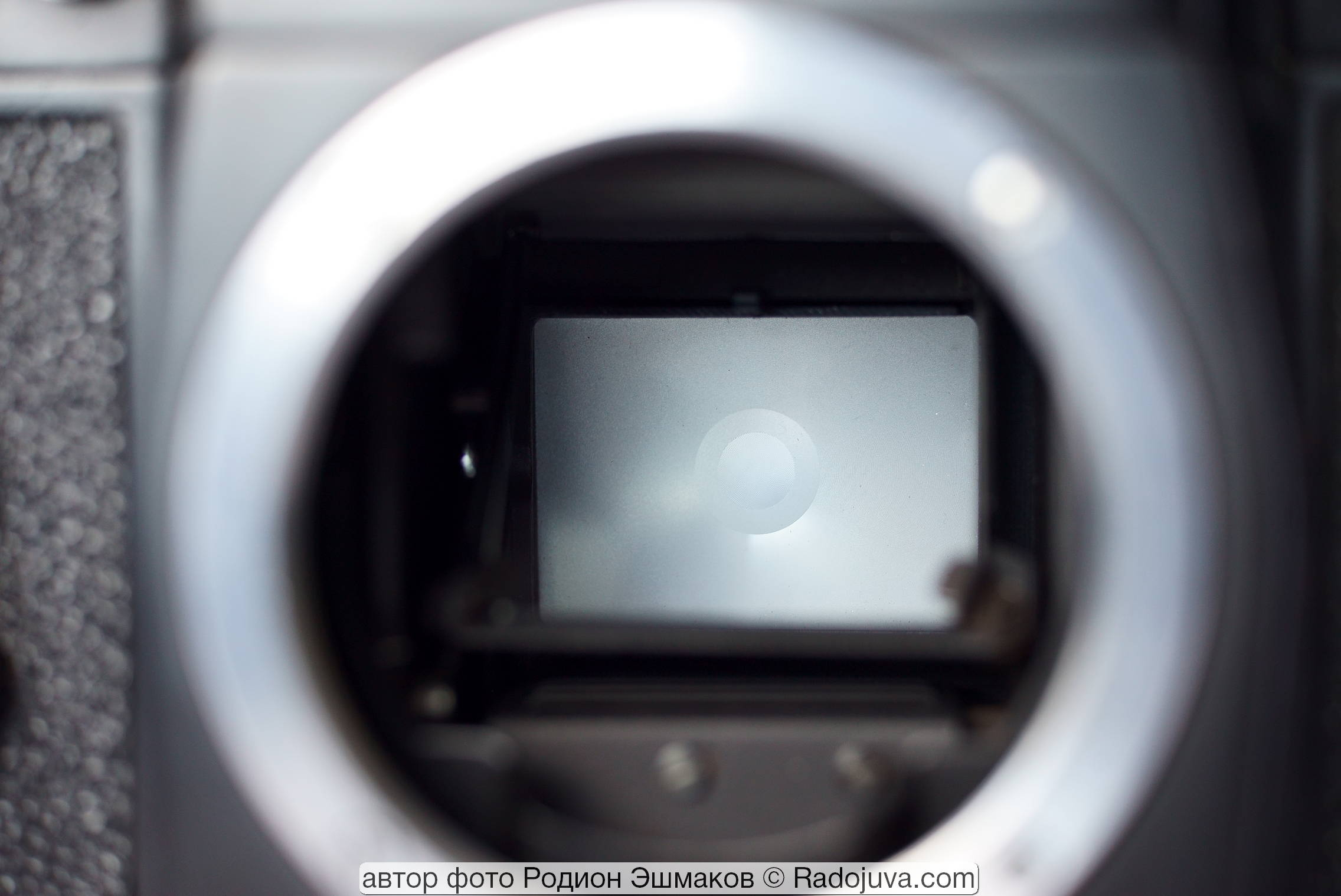 Вид фокусировочного экрана Зенит-12СД через зеркало.