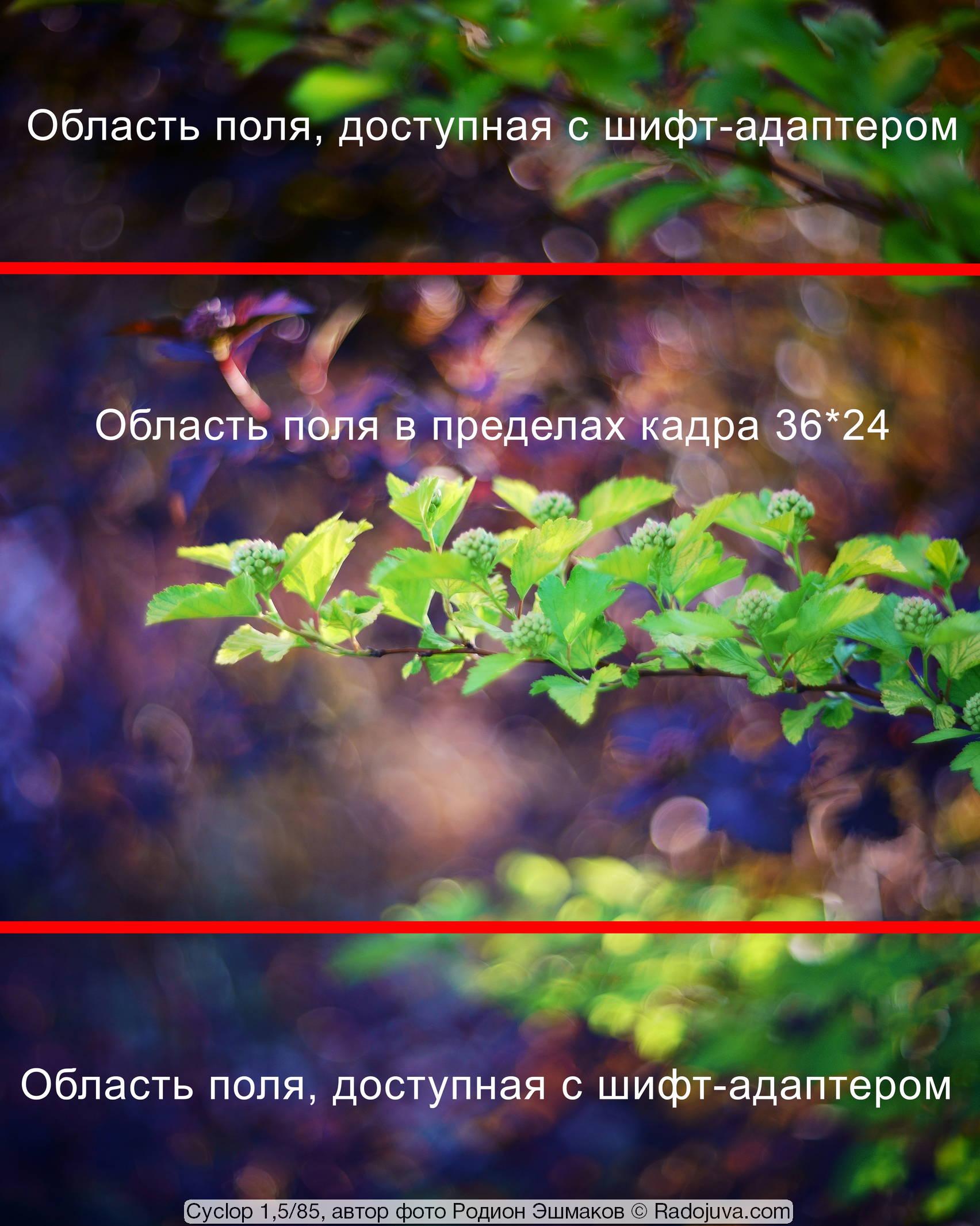 Сравнение поля изображения, доступного с шифт адаптером на полнокадровой камере, с полем обычного кадра 36*24 мм.
