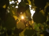 Пример фото на Nikon 10-24