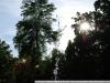 Пример фото на Nikon 18-55 mm 3.5-5.6G 2 VR II AF-S DX Nikkor