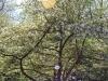 Пример фото на МИР-1В 2,8 37