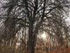 Sample photos on Nikon N AF-S Nikkor 28 mm 1.8 G