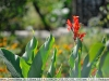 nikon-35-135-mf-ai-s-sample-lens-test-12