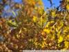 Пример фото на Nikon AF Nikkor 35-70 mm F 2.8