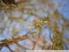 Пример фото на Nikon AF Nikkor 35 mm F 2 MKI
