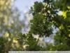 Пример фото на 35КП-1.8 120