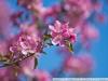 Пример фото на Canon EOS 5D