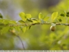 carl-zeiss-planar-85mm-f-1-4-made-in-west-germany-26