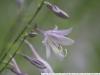 Фото на Auto-Beroflex 75-200 4,5