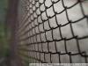 Фотографии на ARSAT H 1:2.8 20mm