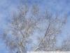 Пример фото на ГЕЛИОС-81 2 53 АВТОМАТ