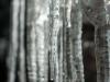 Примеры фотографий на Индустар-22 3.5 50мм