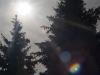 Пример фотографии на Мир-1 2.8 37мм