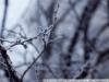 Фото на Мир-3 3.5 65
