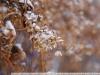 Пример фото на Nikon AF-S Nikkor 17-55 mm 2.8 G ED DX