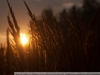 Фото на Nikon AF Nikkor 35-70mm 3.3-4.5