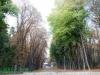Фото на Zoom-Nikkor 35-70mm f3.3-4.5