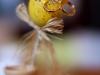Пример фотографии на Nikon AF-S 50mm 1:1.4G